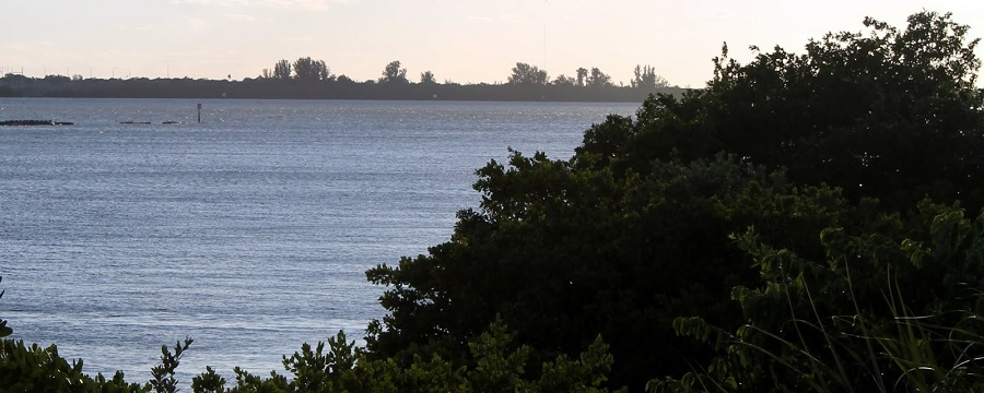 La bahía y Weedon Island de fondo