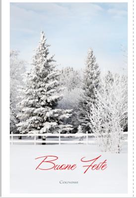 Biglietto di auguri: paesaggio innevato natalizio