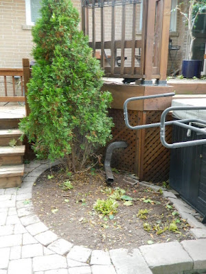 Toronto Fall Cleanup After Don Mills Backyard by Paul Jung Gardening Services--a Toronto Gardening Services Company