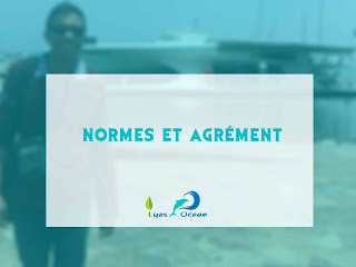 Audit Normes et agrements (Marine - Subsea - Environment)