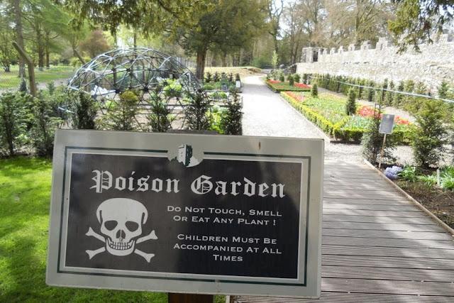 Cork Day Trip: Poison Garden at Blarney Castle