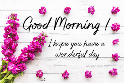 good morning images new flowers रोजेज गुलाब गुड मॉर्निंग पिक्स