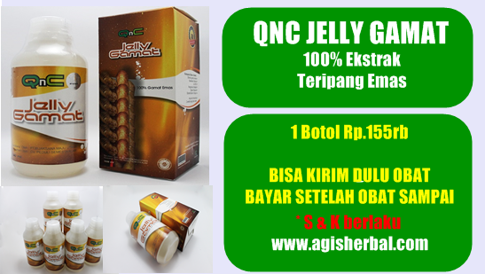 Harga Jelly Gamat QNC