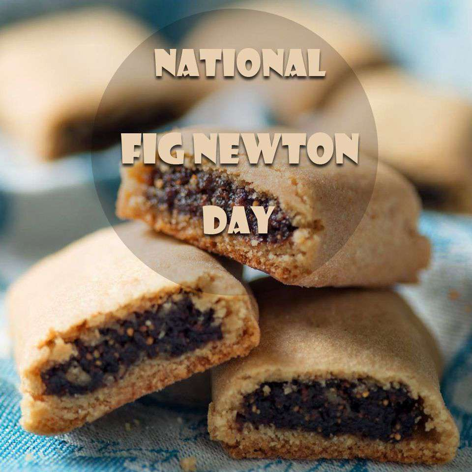 National Fig Newton Day Wishes pics free download