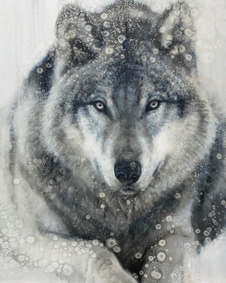 10-Grey-Wolf-David-Riley-www-designstack-co