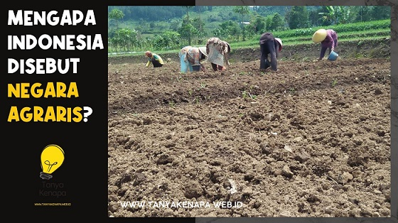 Mengapa Indonesia Disebut Negara Agraris?