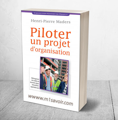 Livre piloter un projet d'organisation PDF