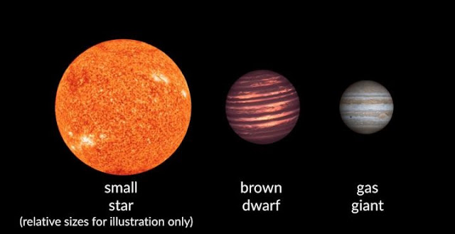 An illustration showing the relative sizes of brown dwarfs as compared to starts and gas giant planets, courtesy of Carnegie Institution for Science.