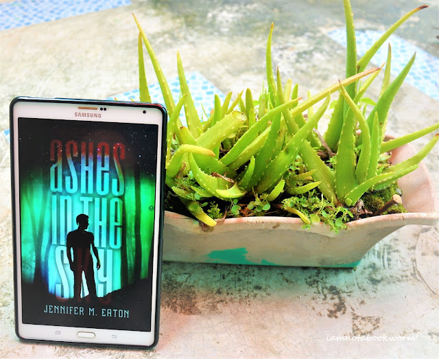 Ashes in the Sky (Fire in the Woods #2) by Jennifer M. Eaton | A Book Review