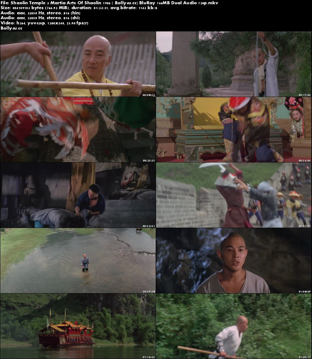 Shaolin Temple 3 Martial Arts Of Shaolin 1986 BluRay 750MB Dual Audio 720p Download