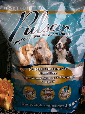 Pulsar salmon, lentil, and pea dog kibble