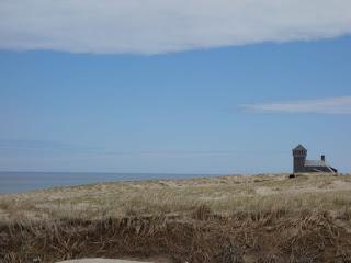 Cape Cod遊記 1