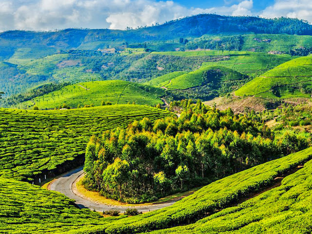 Summer Vacation In Tamil Nadu: Top 10 Locations