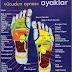 Ayak Tabanı Sinir Sistemi Noktaları