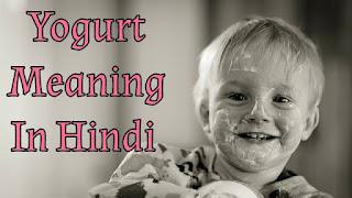 Yogurt Meaning In Hindi