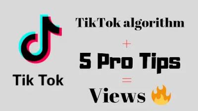 5 Pro Tips To Get More Views On TikTok