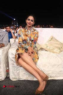 Actress Rakul Preet Singh Stills in Short Dress at Dhruva Pre Release Function  0119.JPG