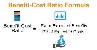 Net Benefit Cost Ratio (Net B/C)