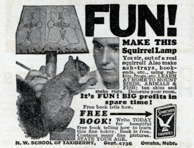 FUN! Make this Squirrel Lamp