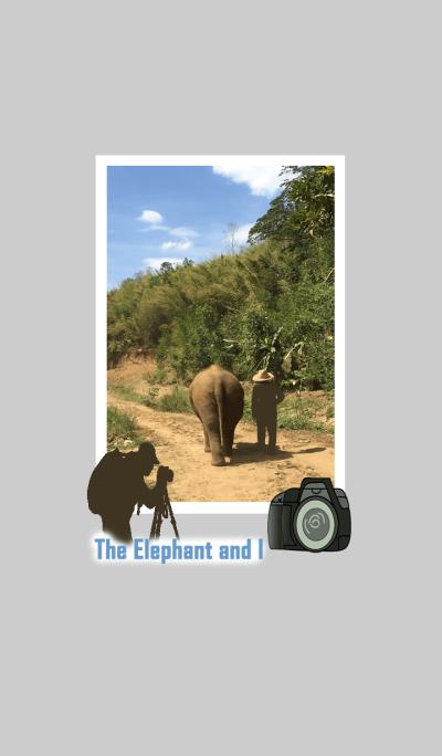 The elephant and I