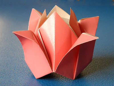 foto origami, Rosa by Francesco Guarnieri