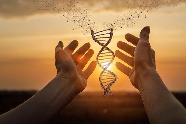 Tajemnice ludzkiego DNA cz. I