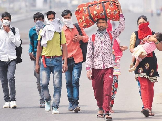 labour displacement in lockdown