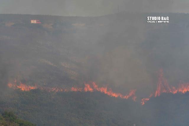 53 δασικές πυρκαγιές σε όλη την χώρα το τελευταίο 24ωρο