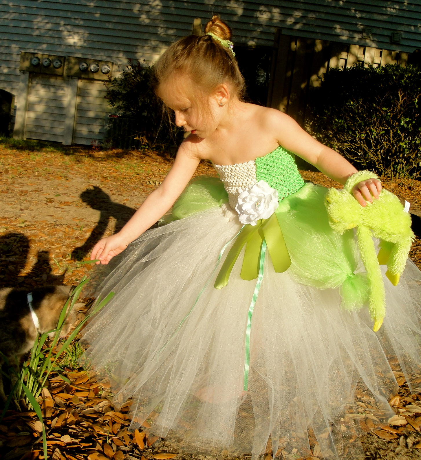 Princess Tiana Dress: Hollywoodtutu Dresses: Princess And The Frog