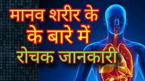 true fact of life quotes in hindi interesting facts about human behavior