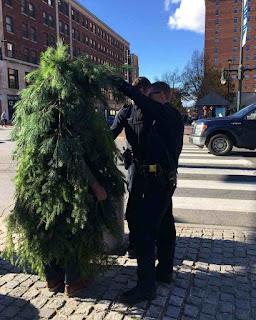 Hombre vestido de arbusto con la policía