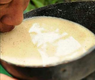 bebida fermentada dos índios