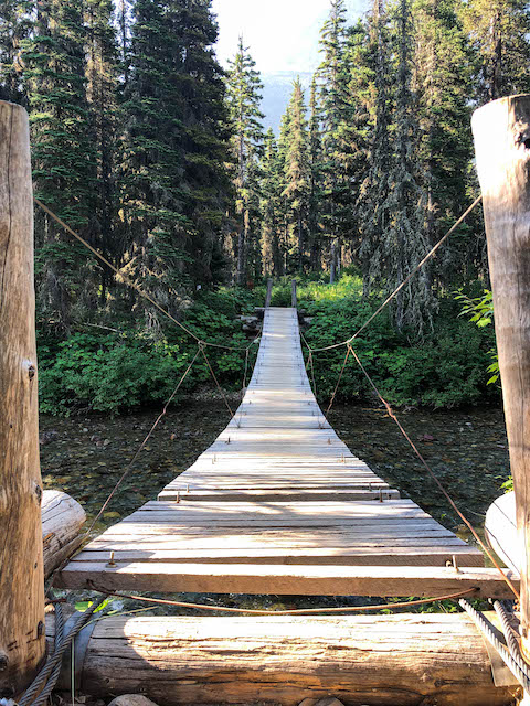 Reynolds Creek Bridge on Gunsight Pass Trail