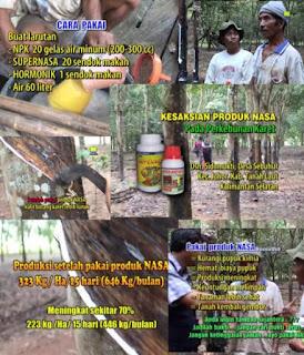AGEN NASA DI Pantai Ceureumen Aceh Barat - TELF 082334020868