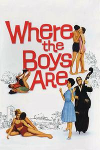 Watch Where the Boys Are Online Free in HD
