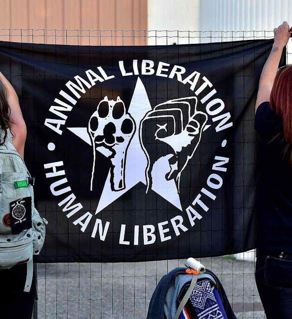 O punho fechado comunista e a pata de cachorro artificiosamente reunidos para uma revolução nunca antes sonhada