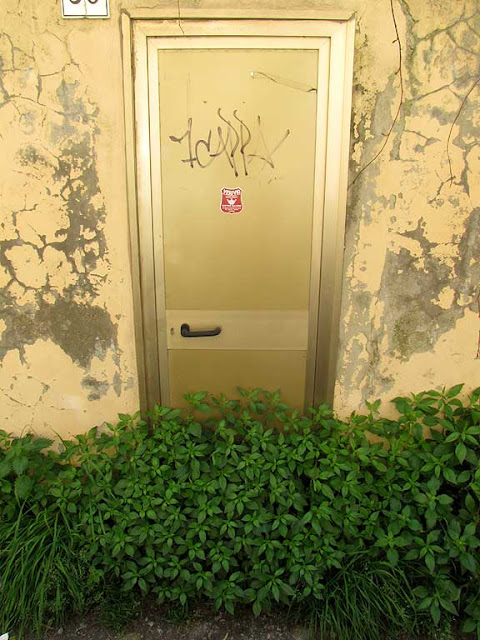 Door blocked by grass, Livorno