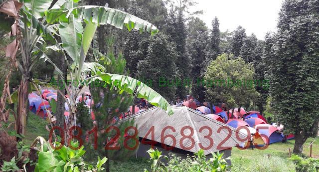 Harga Camp Murah di Agro Wisata Villa Hambalang Outbound