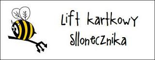 http://diabelskimlyn.blogspot.com/2016/08/lift-kartkowy-sllonecznika.html