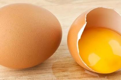 Mitos Atau Fakta Kuning Telur Dapat Menyembuhkan Lambung