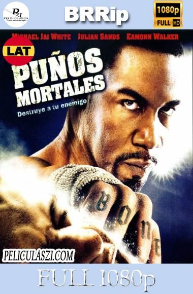 Puños Mortales (2009) Full HD BRRip 1080p Dual-Latino