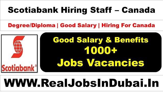 Scotiabank Careers Jobs Opportunities In Canada - 2021