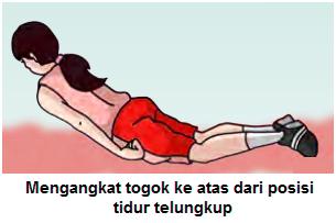 Gambar contoh  Latihan kekuatan otot punggung 1