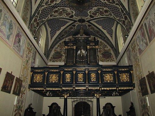 Organy wybudowane w latach 1885-1892 przez organmistrza Tomasza Falla, umieszczone na neoklasycznym prospekcie.
