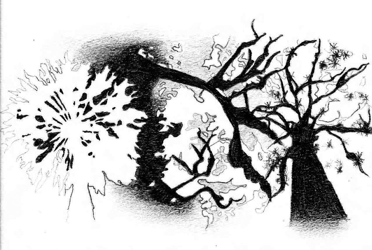 P1 X4ytical Drawings