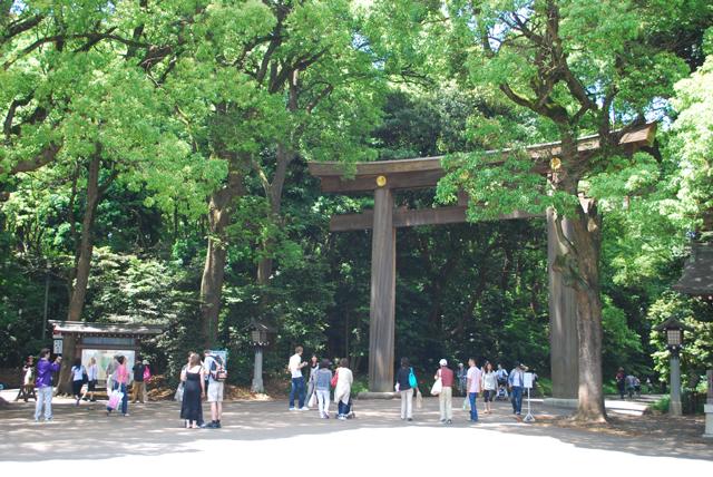 Torii at Meiji Jingu Shrine. Tokyo Consult. TokyoConsult.