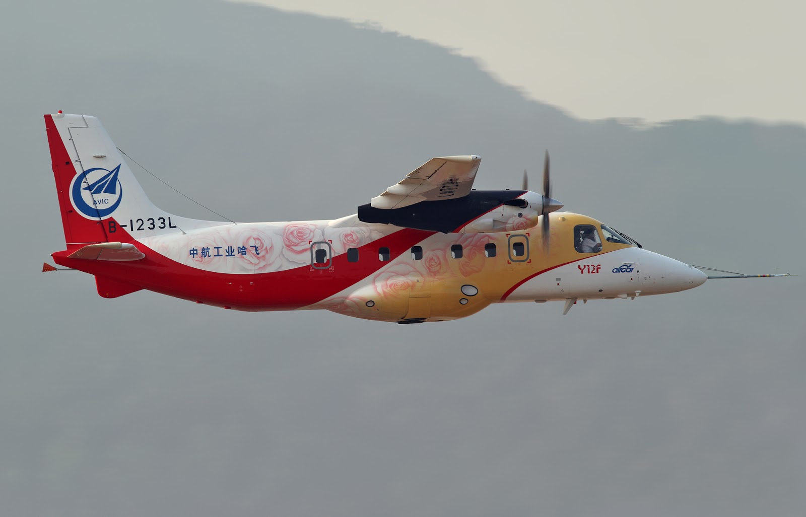 Chinese Y-12F Twin Panda Aircraft Continues Flight Tails ...
