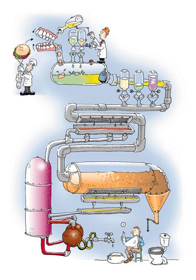 Quimica en los alimentos yahoo dating