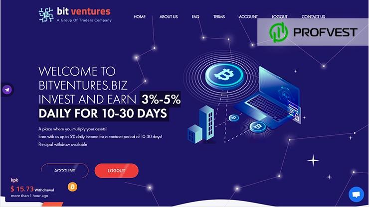 BitVentures обзор и отзывы HYIP-проекта