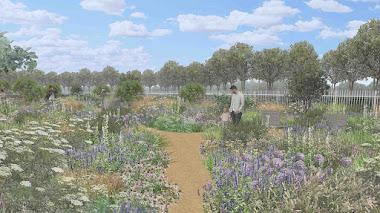 Tom Stuart-Smith explora las posibilidades de los jardines secos en Hampton Court Garden Festival 2021